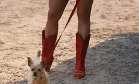 Miranda Lambert boots