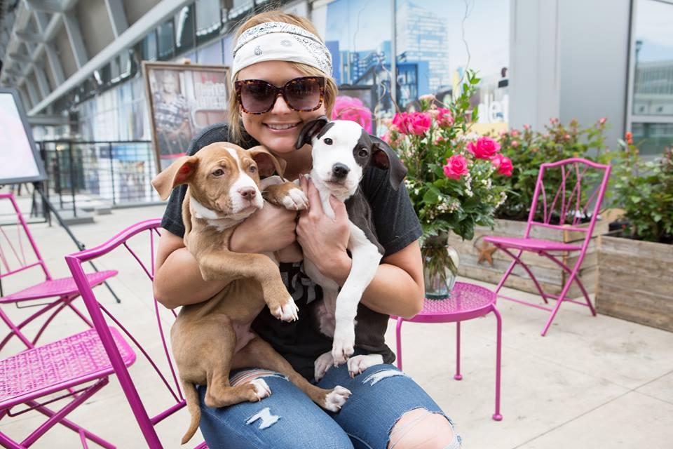 Miranda Lambert pups and roses