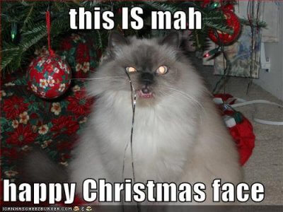 merry-friggin-christmas